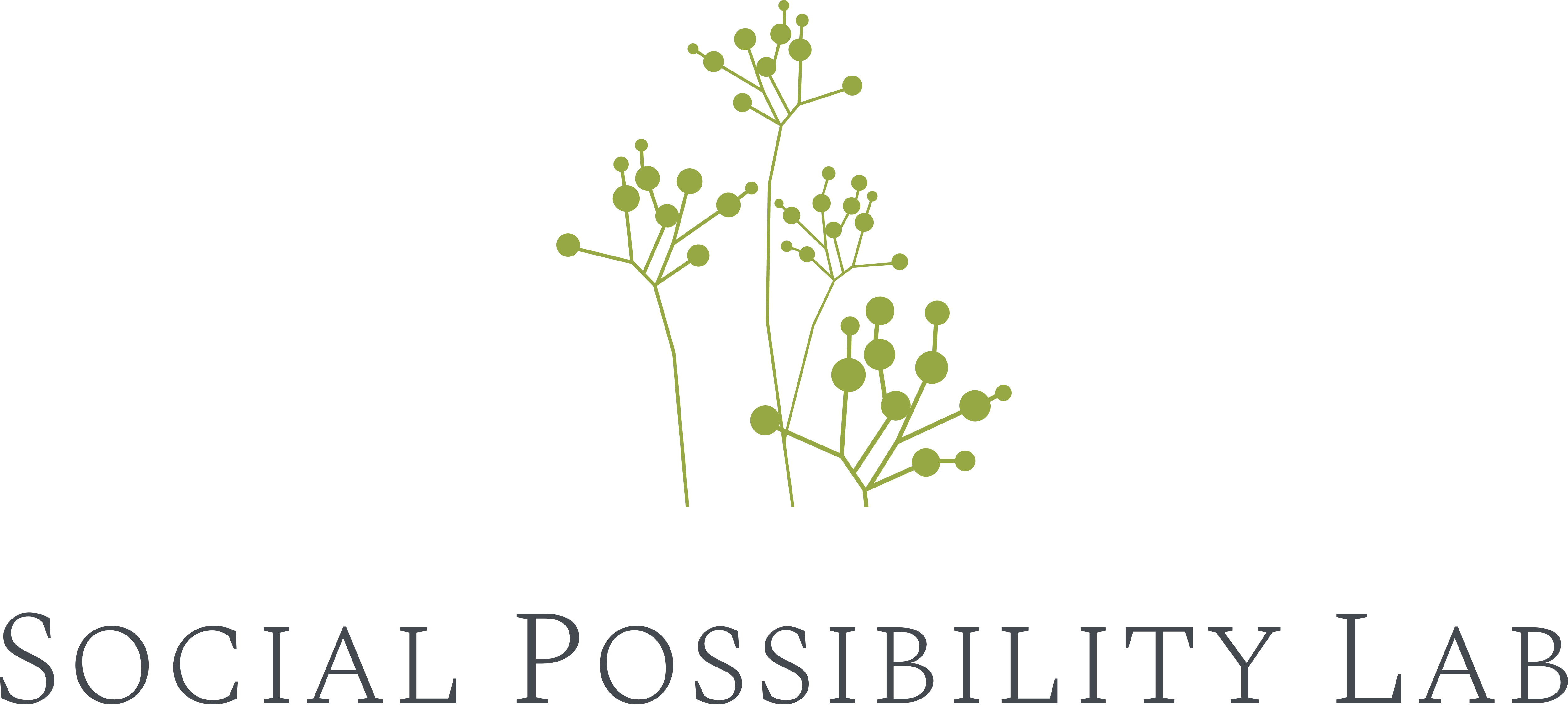 Social Possibility Labs